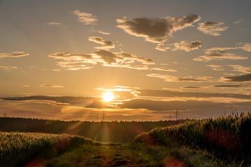 Strommasten bei Sonnenuntergang