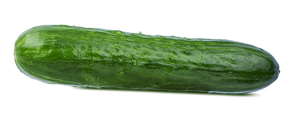 Fresh cucumber isolated on white background with clipping path