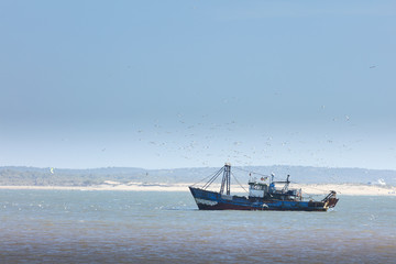 a lot of oysters shells on the sea market in Morocco