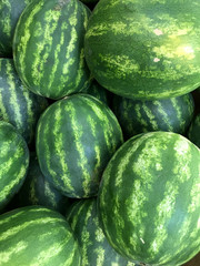 Bunch of Watermelons. Photo image