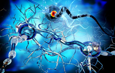 Nerve cells, concept for neurodegenerative and neurological disease, tumors, brain surgery.