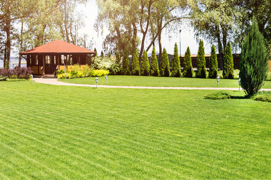 Freshly mowed rows of green lawn at country residence with summerhouse. Hedge of fresh cedars. Landscape design and gardening concept