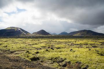 Lava field along Golden Circle, Reykjavik, Iceland