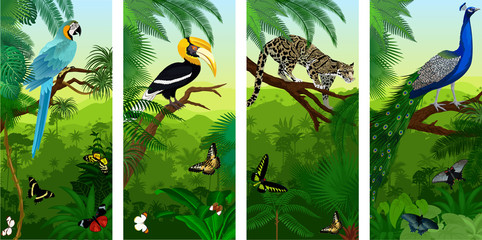 Vectorset of jungle rainforest vertical baners with clouded leopard, peacoock, blue ara, great hornbill and butterflies