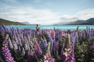 New Zealand - blond girl watching at scenic view of field with purple flowers and blue bay on background
