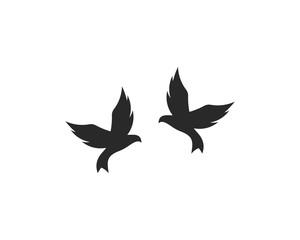 Bird Logo Templat