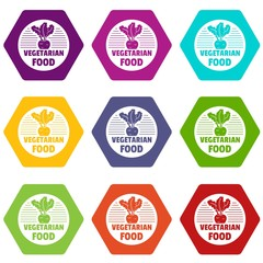 Vegetarian food icons 9 set coloful isolated on white for web
