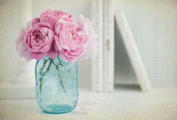 Vintage style photograph of pink English Roses in a turquoise Mason Jar on white