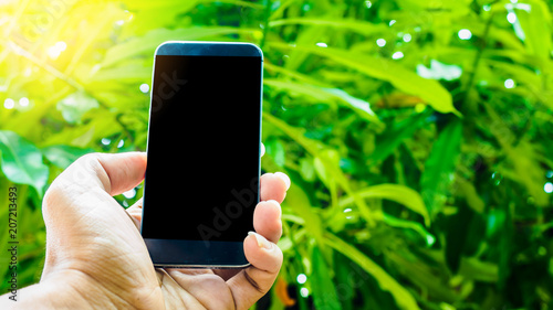 Wall mural Man holding smart phone nature background