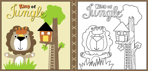 vector cartoon of cute lion the king of jungle, coloring page or book. eps 10