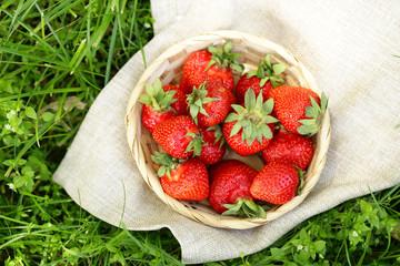 ripe organic strawberry in basket on green grass