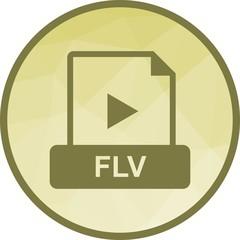 FLV, file, document