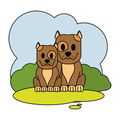 color couple dog cute animal in the landscape