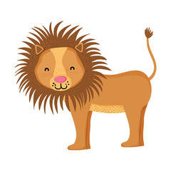adorable lion wild animal creature