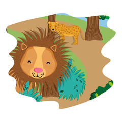 adorable leopard and lion wild animals in the forest