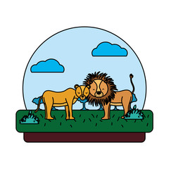color adorable lion couple animal in the landscape
