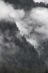 foggy clouds rising from dark mountain forest