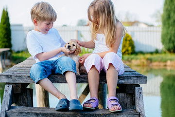 Adorable boy and girl sitting on wooden bridge and stroking their Golden Cocker Spaniel puppy dog near the lake at summer day. Kids and animals friendship concept.