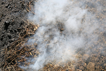 Smoke in manufacture of charcoal.