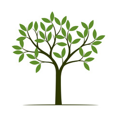 Green Spring Tree. Vector Illustration.