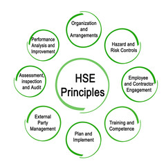 Eight HSE Principles