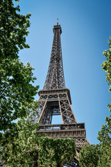 Eiffel Tower, view from Champ de Mars