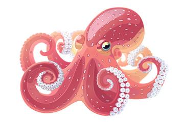 vector cartoon octopus. Aquatic water underwater animal. Hand drawn sketch. Wildlife sea ocean life. Aquarium exotic  element. Nature pattern. Maritime, marine illustration isolated white background