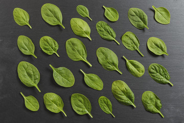 Raw spinach leaves placed geometrically on black slate background