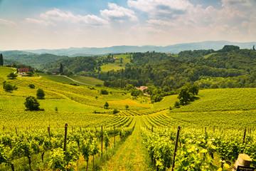 Austria Vineyards vine street south Styria travel spot