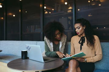 Young diverse businesswomen
