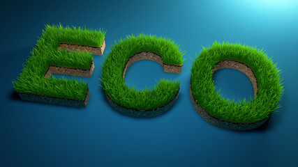 3D rendering Eco word made of green grass on gradient blue background . Save the Earth concept .