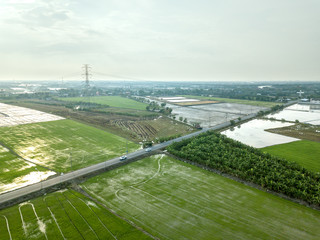 A country road through the bright green rice fields, nature rural landscape with green rice fields in countryside Land with grown plants of paddy, aerial view from flying drone.