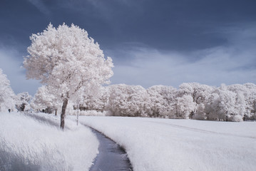 countryside in infrared - Germany