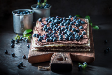 Sweet and homemade wafers with chocolate cream and blueberries