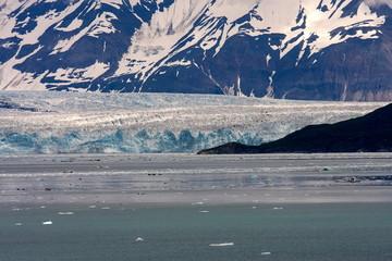 ハバード氷河