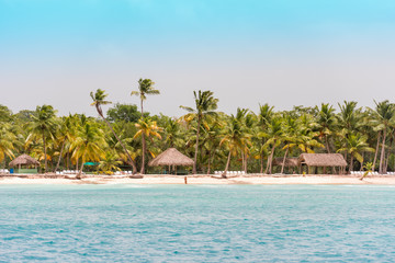 Poster Caraïben SAONA, DOMINICAN REPUBLIC - MAY 25, 2017: View of the sandy beach of the island Saona. Copy space for text.