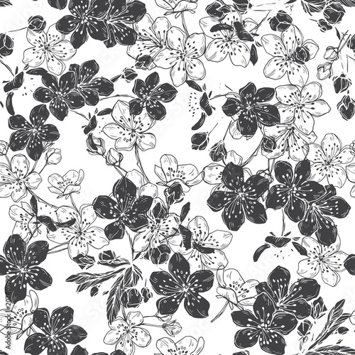 Blooming Cherry Abstract Floral Background Black And White Vector