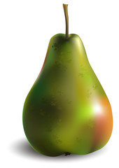Green pear with red side. Vector illustration.