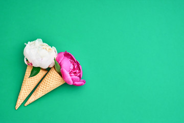 Ice cream cones with white and pink peonies flowers over green background. Summer concept. Copy space, top view