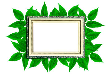 Layout of golden wood frame on green leaves isolated background, luxury and nature concept mockup.