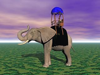 Elefant mit Sänfte und Decke