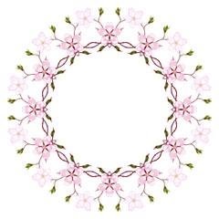 Rozetka - kwiat wiśni