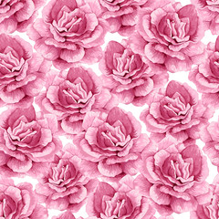 Rose flowers, petals and leaves in watercolor style on white background. Seamless pattern for textile, wrapping paper, package,