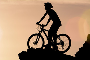 bicycle transportation and success stories in nature