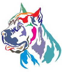 Colorful decorative portrait of Cane Corso Italiano vector illustration