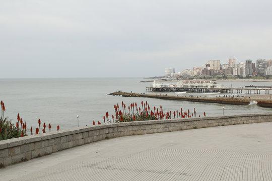mar del plata muelle pescadores argentina