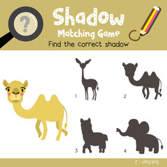 Shadow matching game of Bactrian Camel animals for preschool kids activity worksheet colorful version. Vector Illustration.