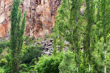 overgrown slope of Ihlara Valley in Cappadocia