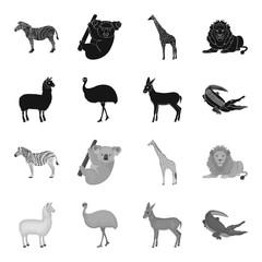 lama, ostrich emu, young antelope, animal crocodile. Wild animal, bird, reptile set collection icons in black,monochrome style vector symbol stock illustration web.