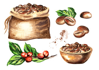 Coffee beans set. Watercolor  hand drawn illustration  isolated on white background